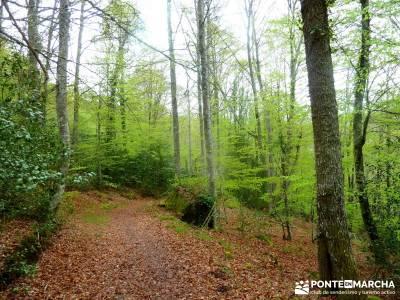 Cañones Ebro, Alto Campoo, Brañosera,Valderredible; viajes somiedo; singles y ocio